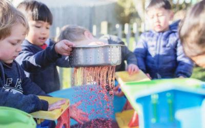 child care wellington cbd